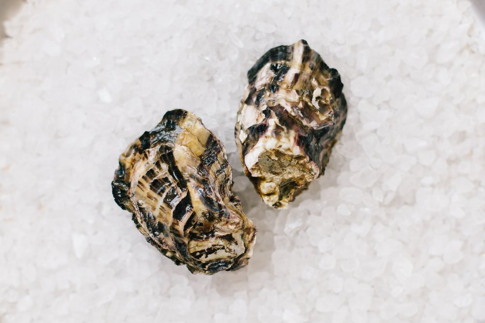 Coromandel - Origin: McGregor Bay, New ZealandFlavor Profile: Sweet oyster with a mild brine and strong melon finish. Texture of the meat is firm and slightly chewy.