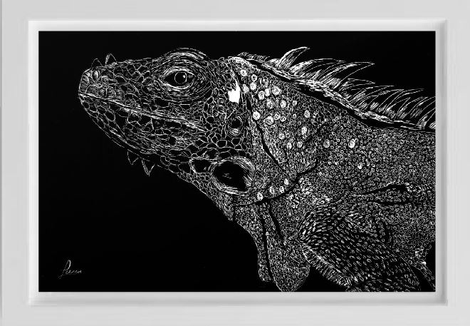 unsketch iguana pet portrait