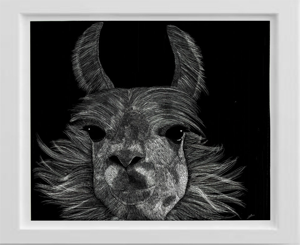 Scratchboard llama wall decor