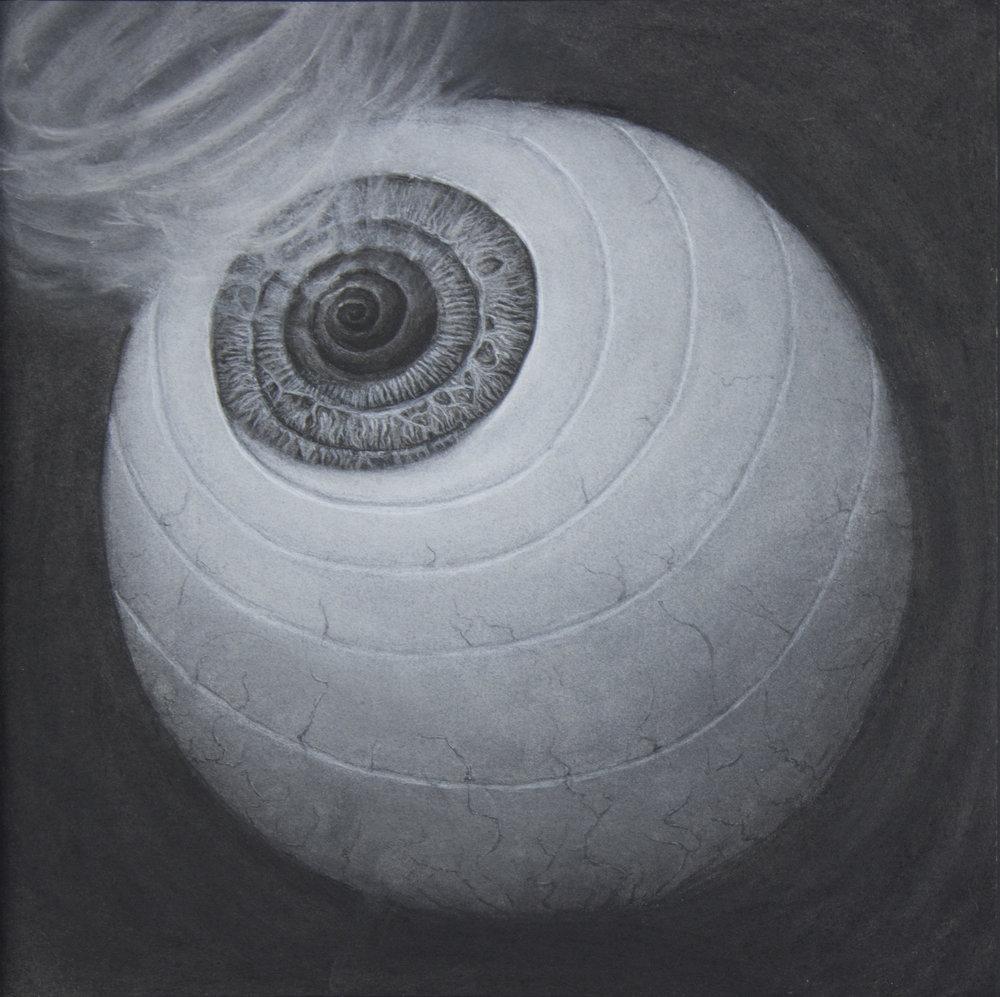 Spiral Eye