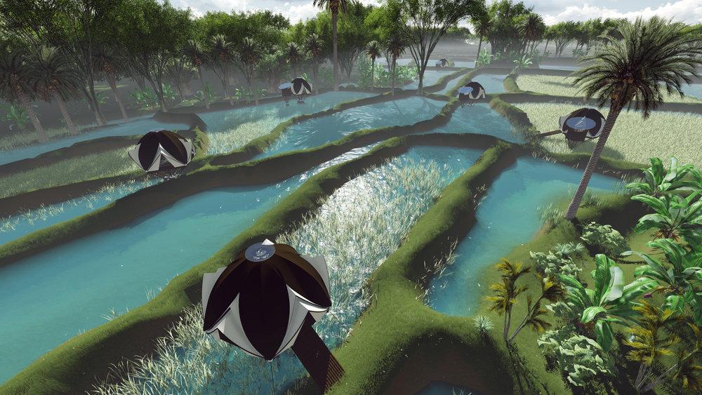 CONCEPT , eco-simbiotic domes (4).jpg