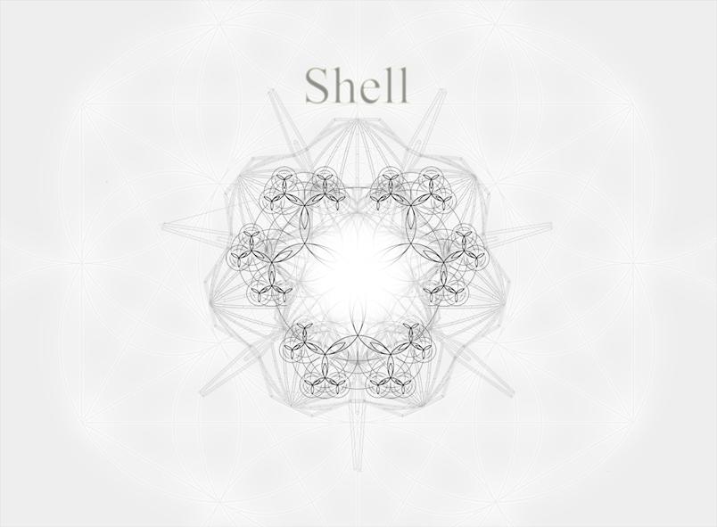 pag 1 shell.jpg