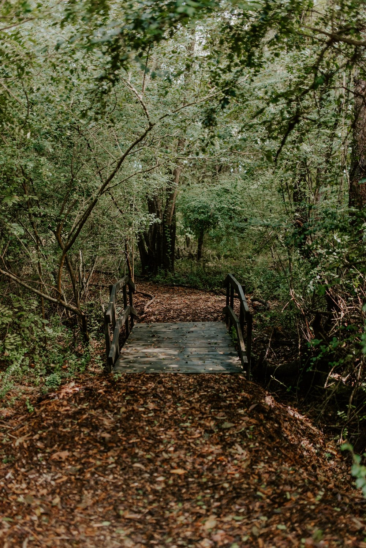 outside - walking path.jpg