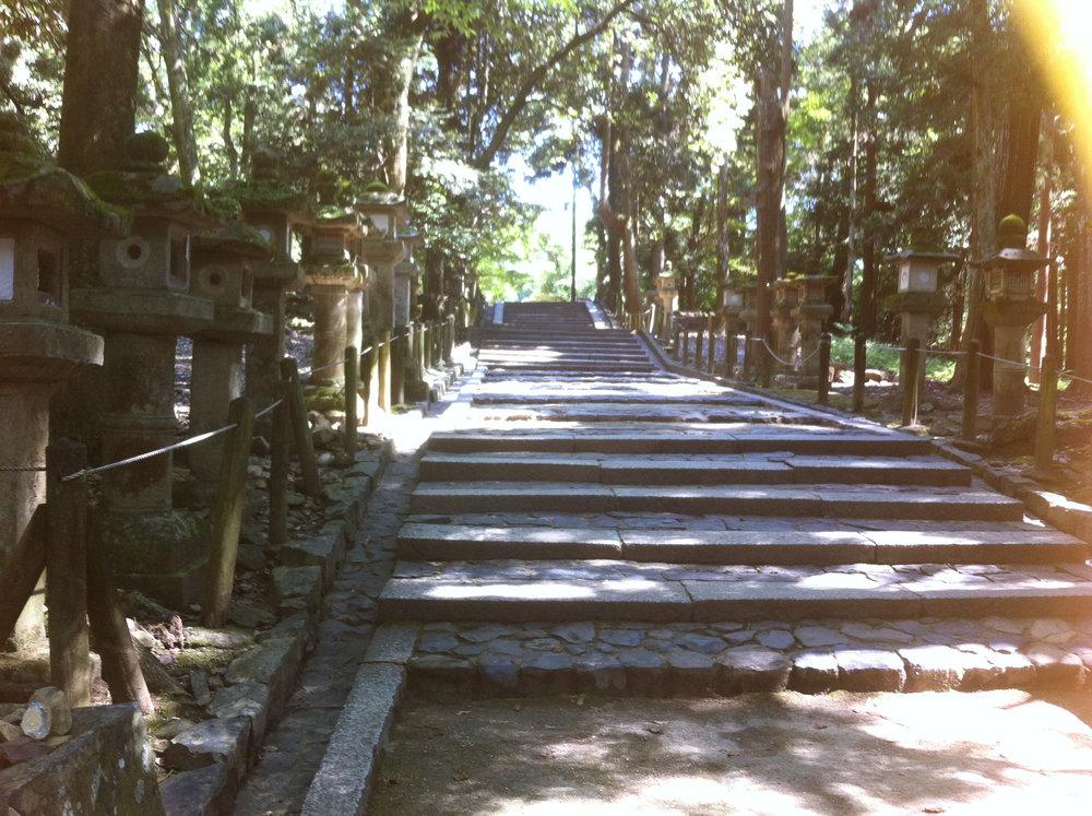 Nara 3.jpg