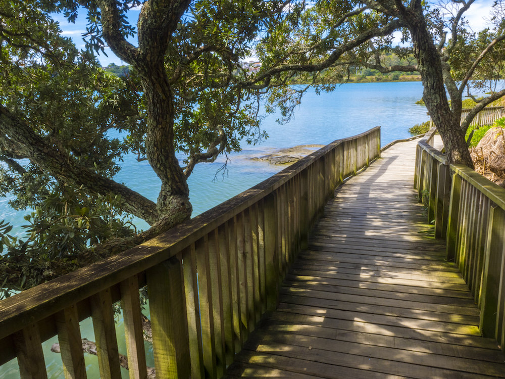 2. Walk along the waterfront boardwalk with volcano views  - Hobson Bay Walkway Photograph from @WalksinAuckland