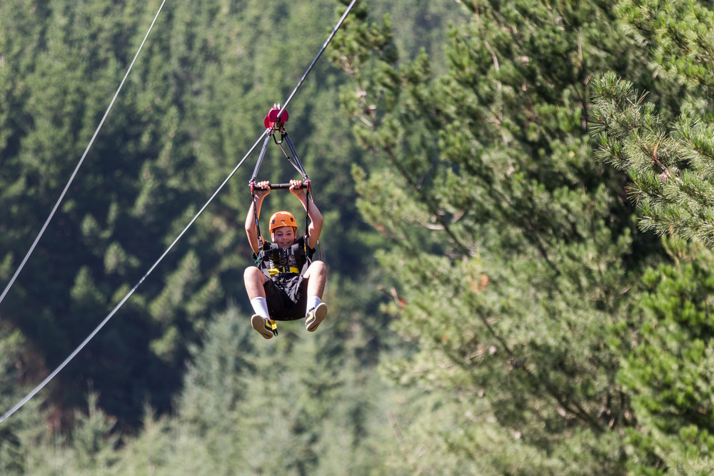 5. Zip lining through New Zealand Native - Zip-lineand adventure the recently opened park. @Adventure Park