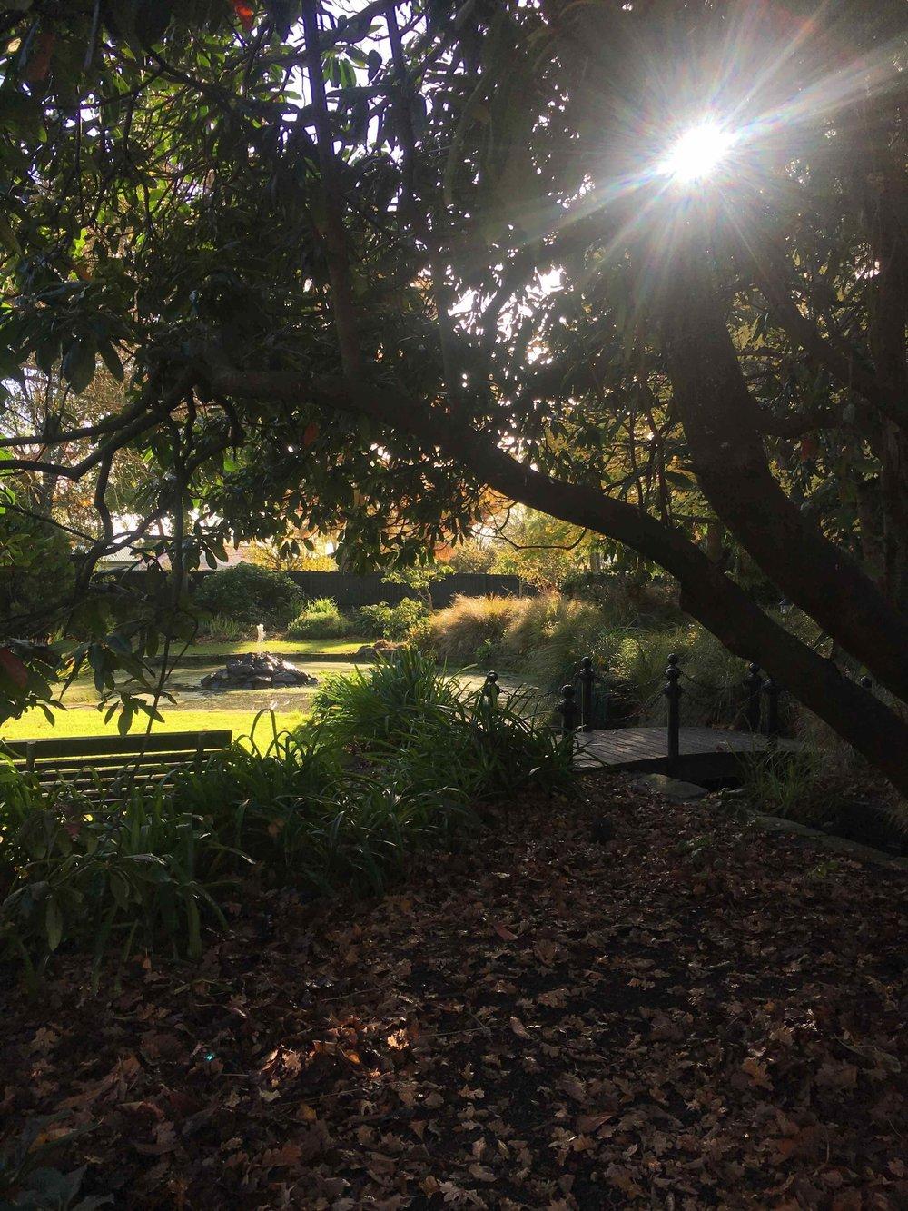 4. Explore Edmonds Factory Gardens