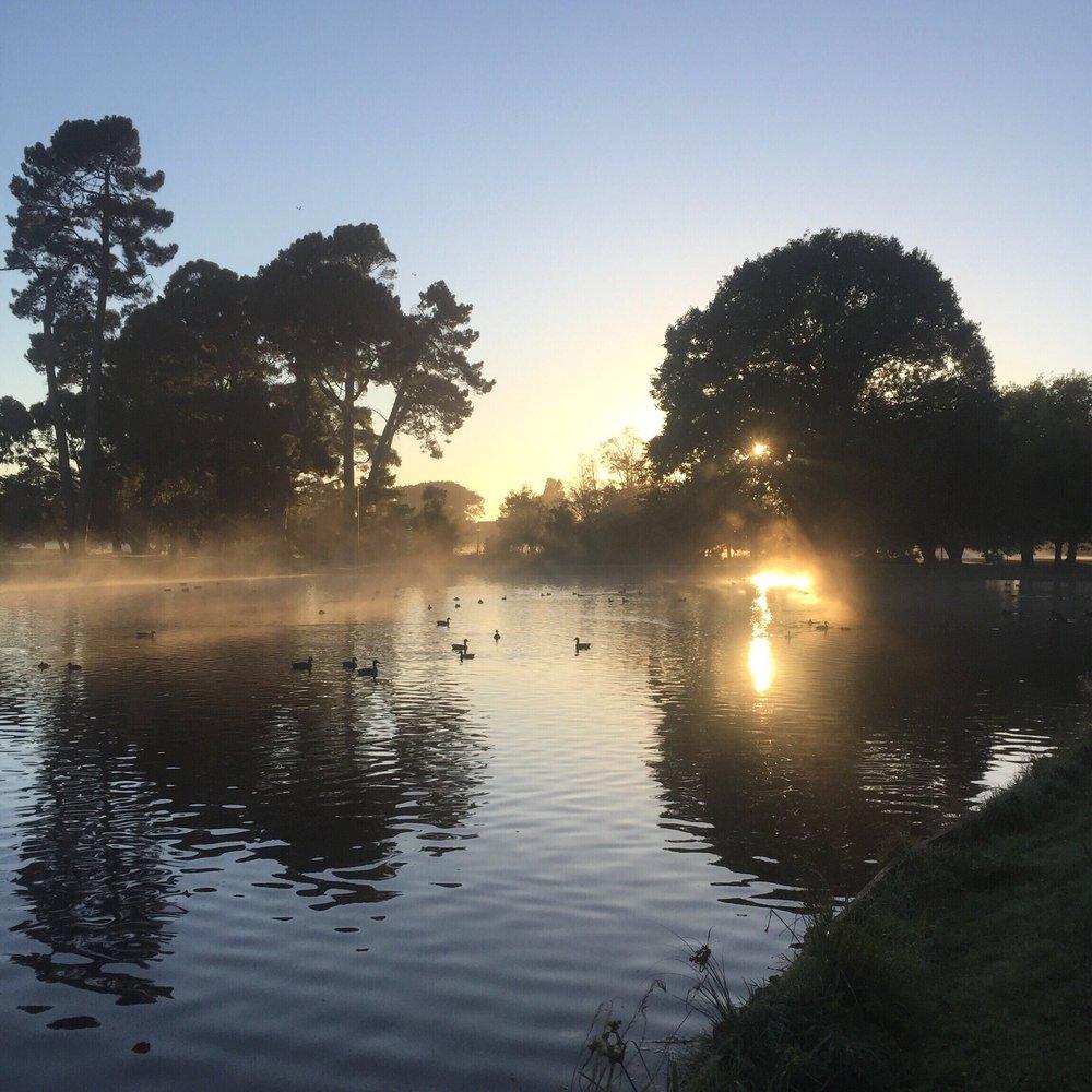 3.  Sunrise walk in Hagley Park