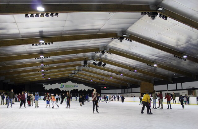 3.  Take friends of family ice skating this weekend