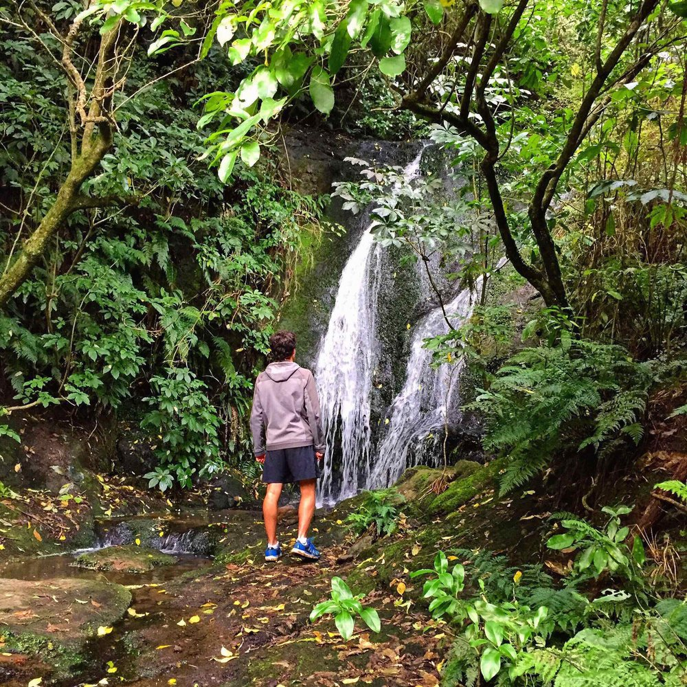 1.WALK TO ANNE'S FALLS ON THE PORT HILLS