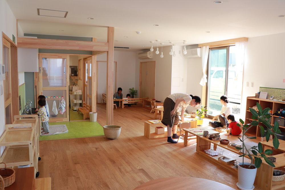 yamanoko_image1.JPG