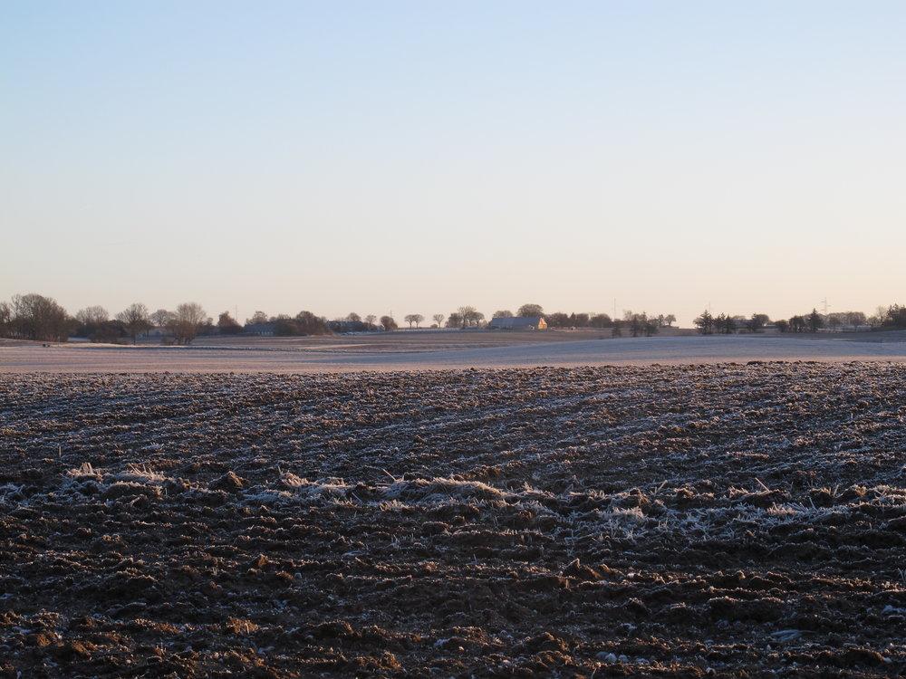 Udsigten mod øst fra vores lille grund en frostkold januarmorgen