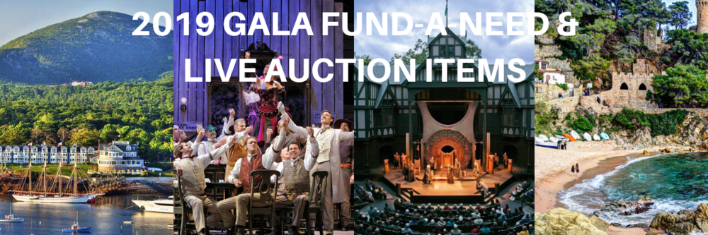 Gala Fund-A-Need (1).png