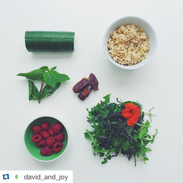 Instagram/saladpride   Salad be deconstructed like relationships of the postmodern era. #deep #philosophical #hashtag