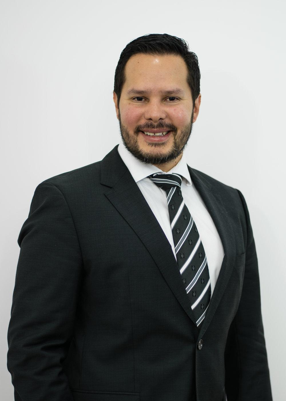 Carlos Bran - Artículos