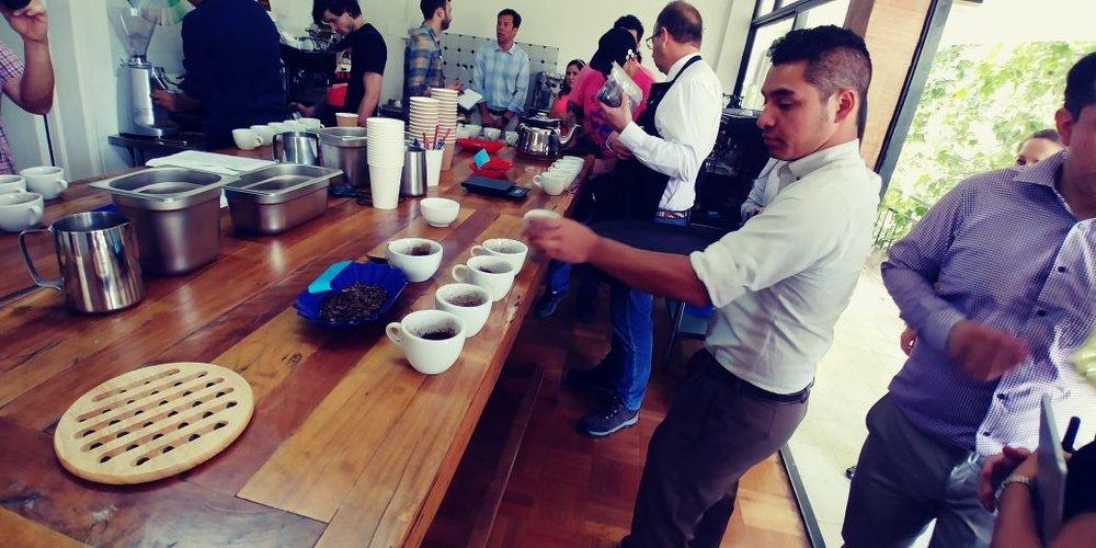 Catación de Café diferenciado de Guatemala en Chile3.jpeg