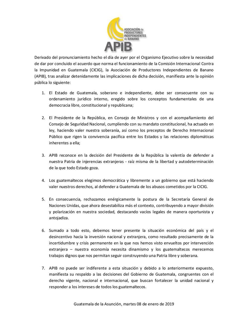 APIB.jpg