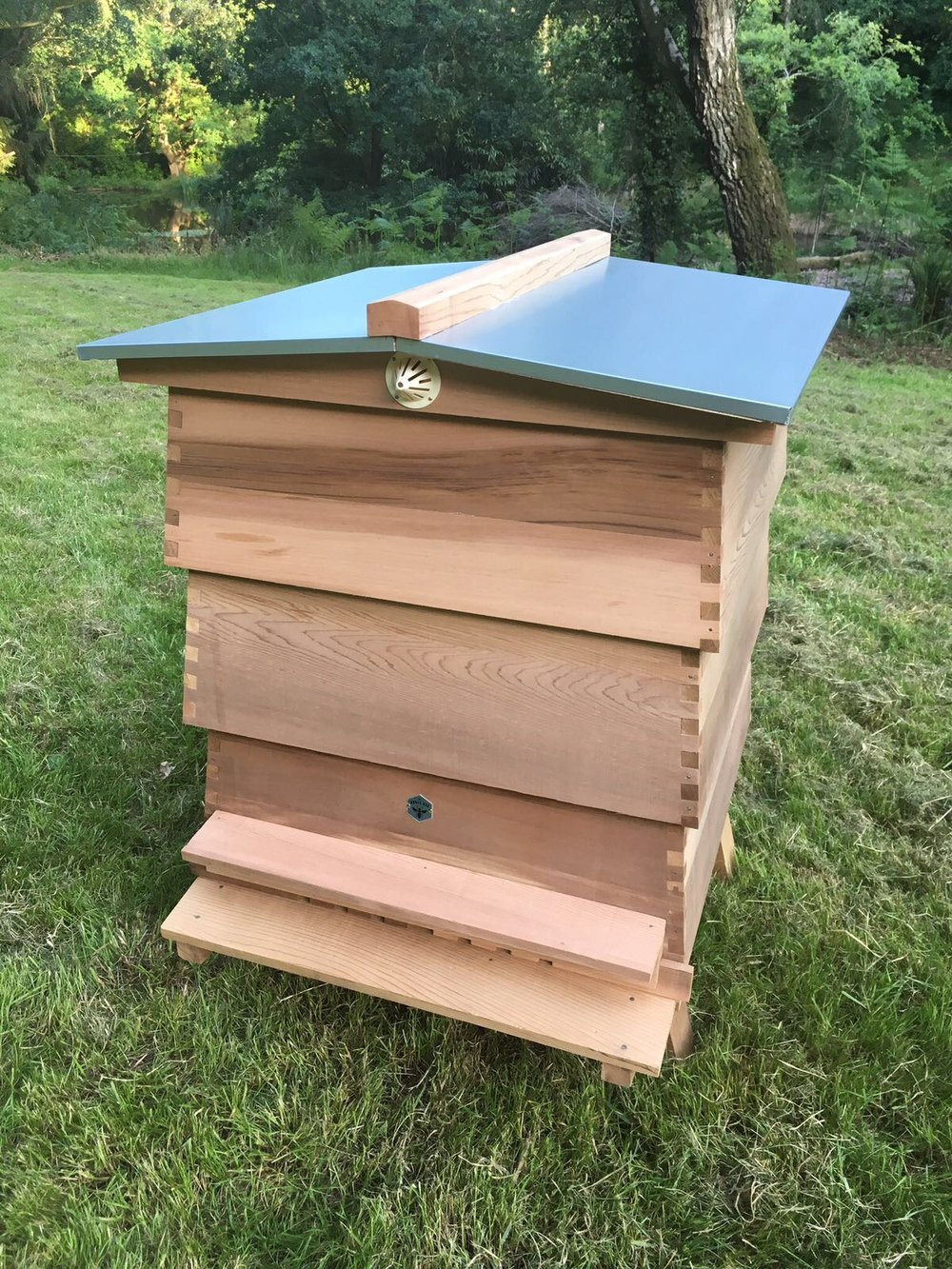 One of our WBC hives.