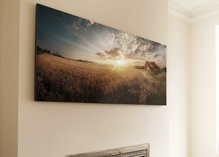 Large scale panel print, mounted onto black edged wood