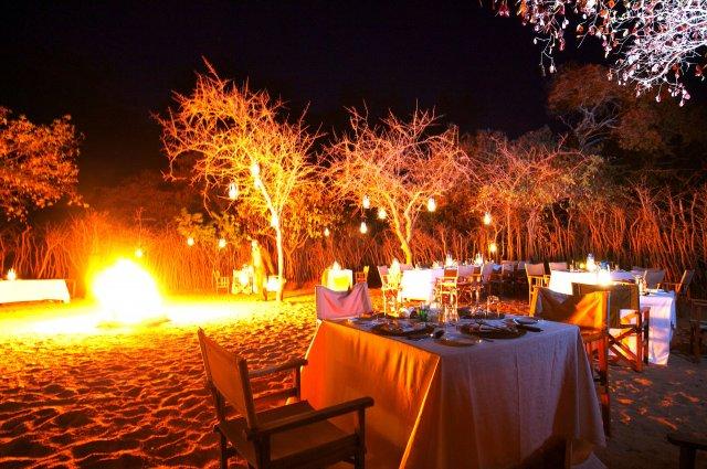 treetops dinner.jpg
