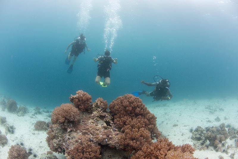 Manta divers.jpg