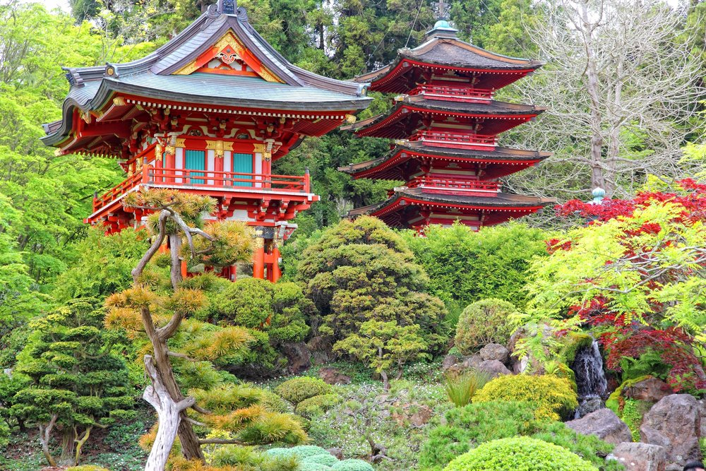 Jun 29:Enjoy time with family - There's still lots to do in and around San Fransisco!Perhaps a museum or a walk in the Japanese gardens!