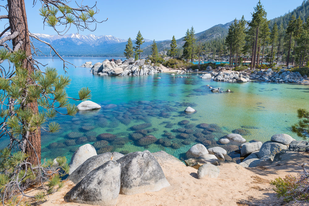 Jun 30:Enjoy time with family - If journeying outside of the city is of interest, Lake Tahoe is a 3.5 hr drive through Sacramento and lots of awesome scenery!