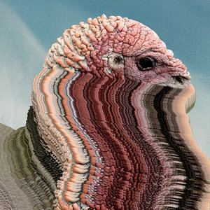 bird Brains (2017)Innovative Leisure / Last Gang Records - BUYBandcamp  /  10