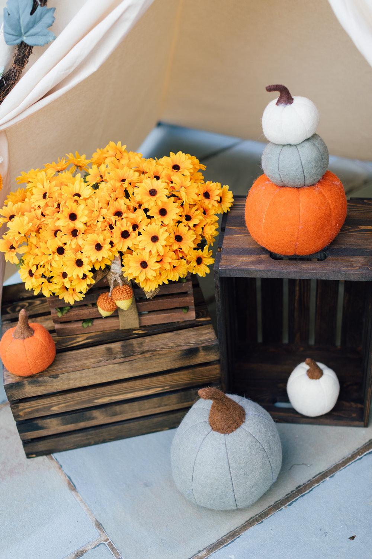 Oct13Charlie's2ndBirthday-30.jpg