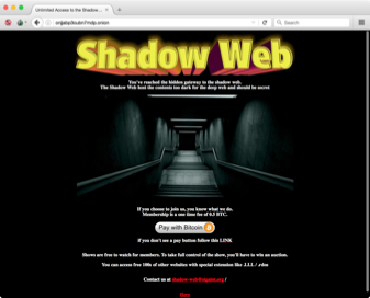 Shadow Web, a FH2 hosted website that was taken down in Friday's attack, has now appeared back online.