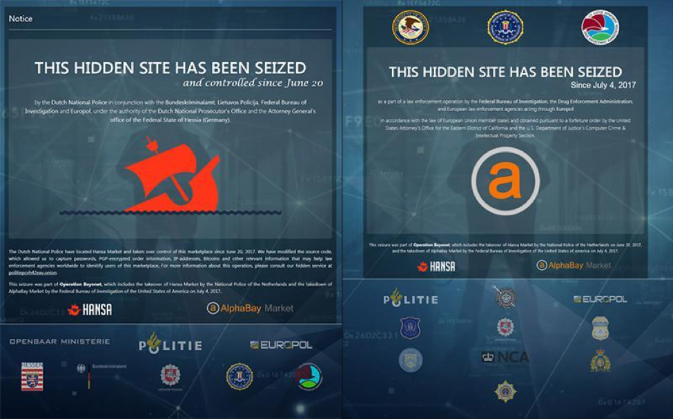 Seizure Sites for Hansa and AlphaBay Darknet Markets