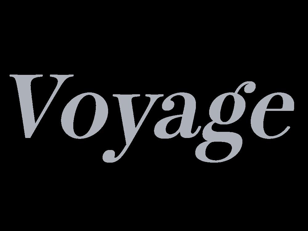 voyage media mounted.png