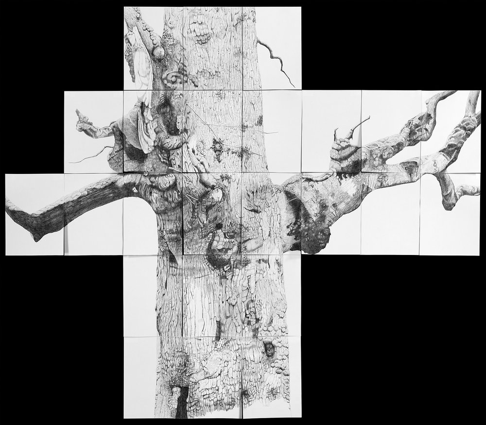 Totem - 57.5'' x 66'' - Graphite On Paper - 2008