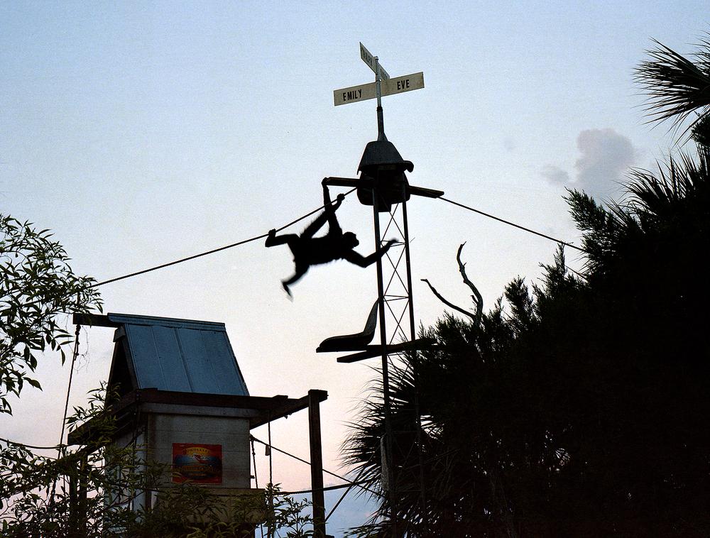 Last Light, Monkey Island, 2013