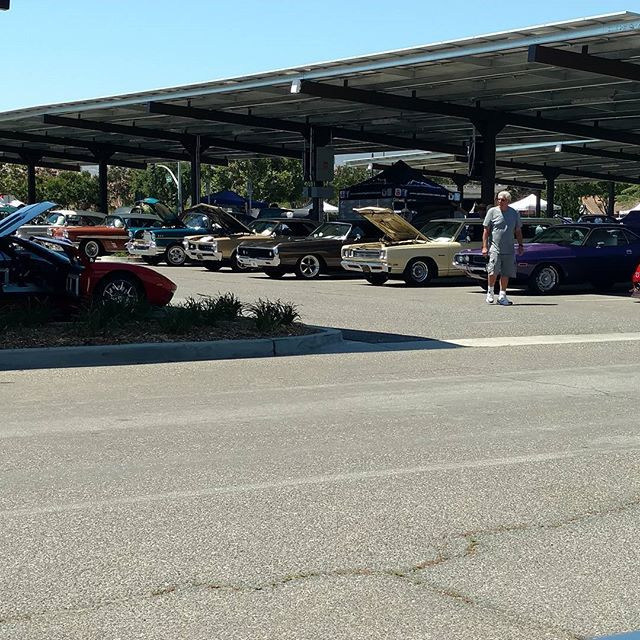 Only a fraction of the cars at the 8th annual Simi Valley Cops N' Cruisers #coffee #coffeetruck #carshow #copsncruisers #cops #police #goodtimes