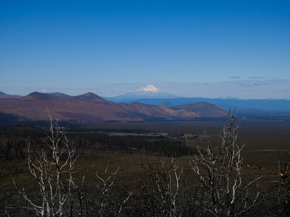 Mt. Shasta from Hat Creek Rim Overlook
