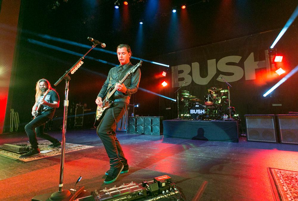 Bush-035.jpg