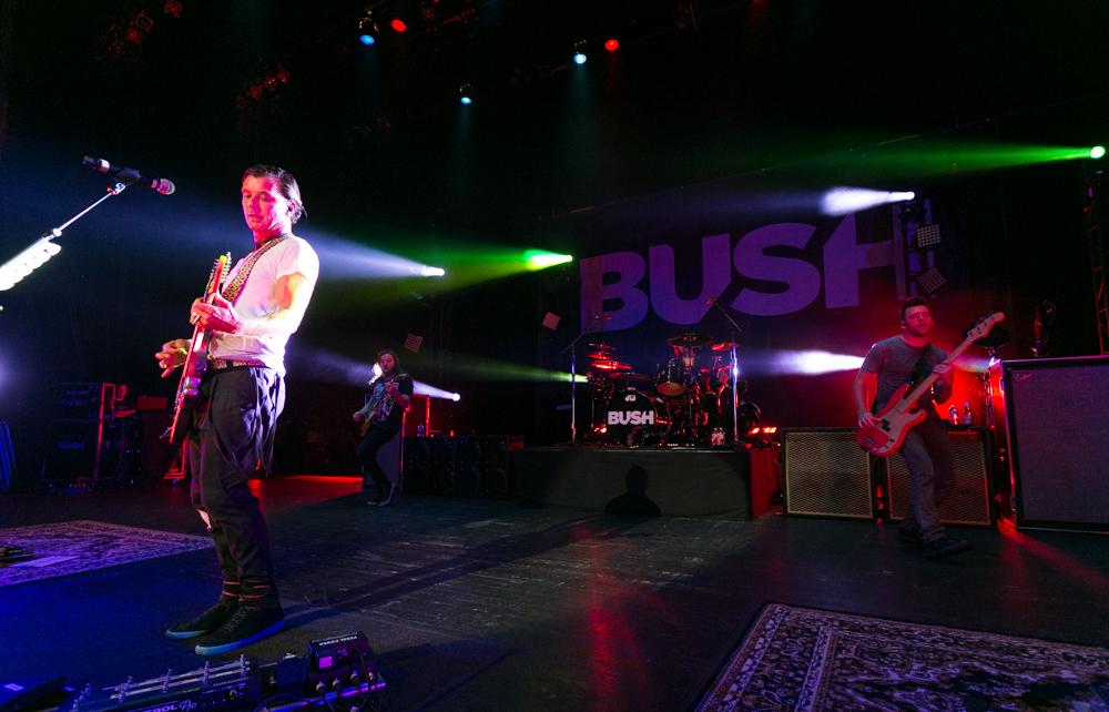 Bush-044.jpg