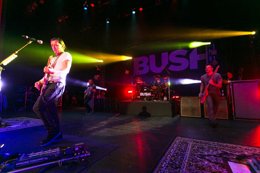 Bush-045.jpg