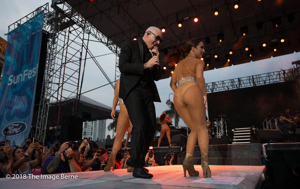 Pitbull-301.jpg