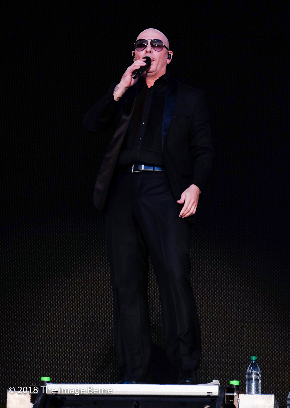 Pitbull-335.jpg