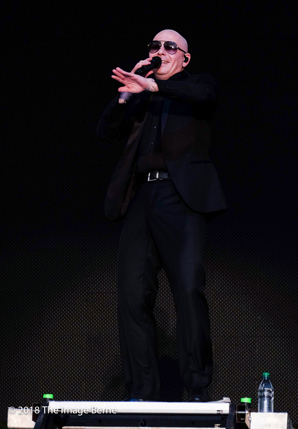 Pitbull-336.jpg