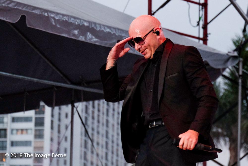 Pitbull-346.jpg