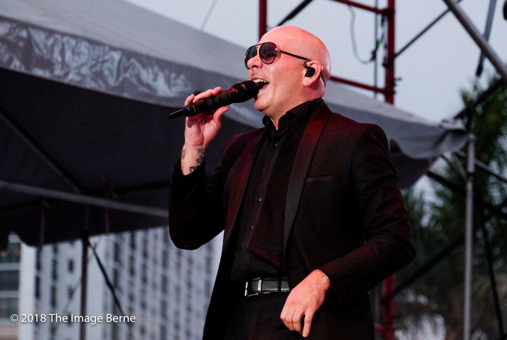 Pitbull-348.jpg