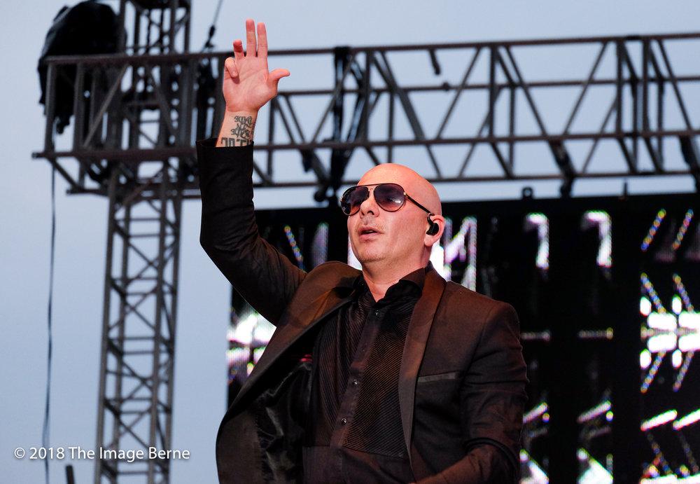 Pitbull-350.jpg