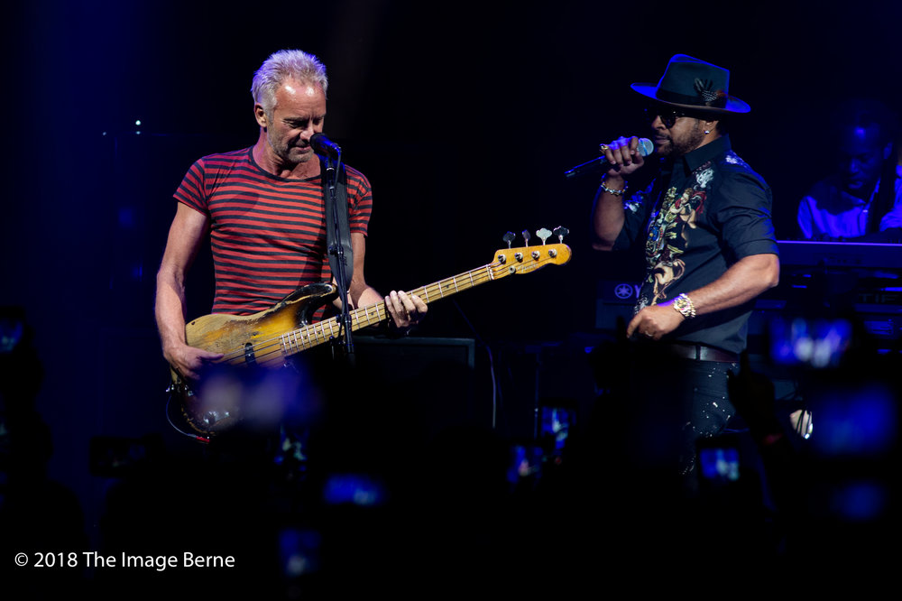 Sting, Shaggy-02.jpg
