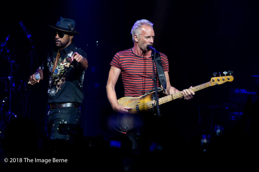 Sting, Shaggy-03.jpg