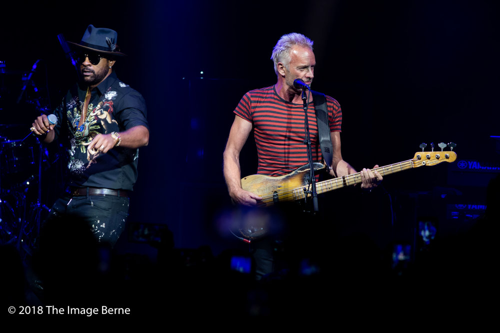 Sting, Shaggy-04.jpg