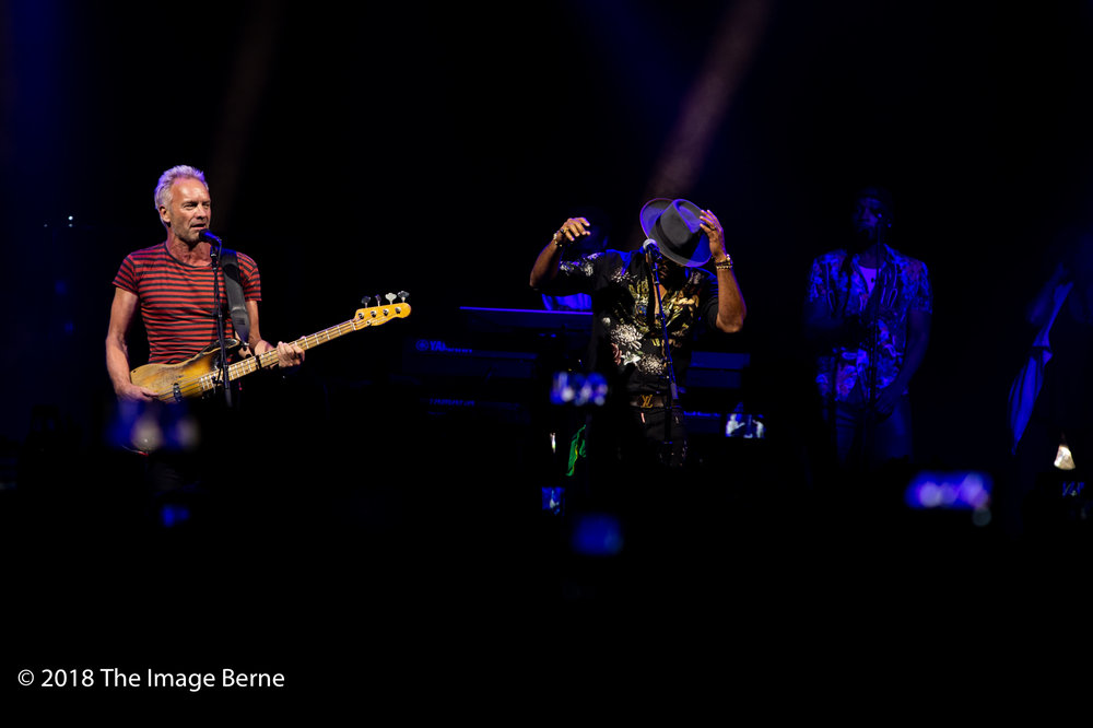 Sting, Shaggy-08.jpg
