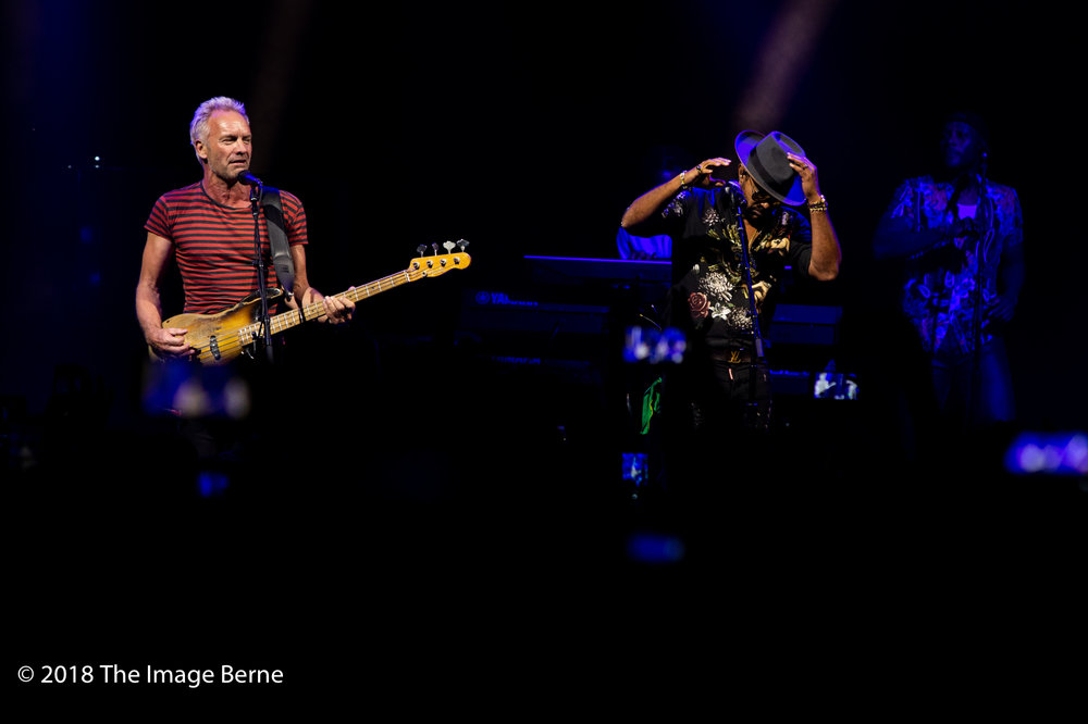 Sting, Shaggy-09.jpg
